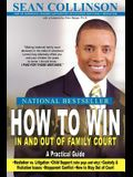 How to Win in and Out of Family Court: A Practical Guide