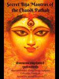 Secret Bija Mantras of the Chandi Pathah: Bijamantratmaka Tantra Durga Saptasati Guyabija Namavali