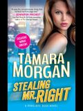 Stealing Mr. Right