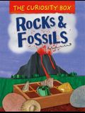 The Curiosity Box: Rocks and Fossils