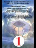 Beneath the Quaternion Universe: UST, QUeST, BQUeST, MOST, UTMOST, BMOST