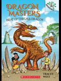 Heat of the Lava Dragon: A Branches Book