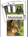 Mammals of the Southeast