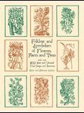 Folklore and Symbolism of Flowers, Plants and Trees
