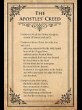 Creed I Believe Card Pack (Pkg of 25): What Christians Believe and Why