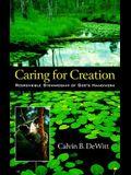 Caring for Creation: Responsible Stewardship of God's Handiwork