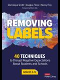 Removing Labels, Grades K-12: 40 Techniques to Disrupt Negative Expectations about Students and Schools