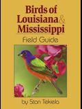 Birds of Louisiana & Mississippi Field Guide
