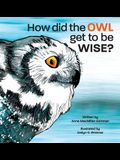 How Did the Owl Get to Be Wise