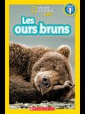 National Geographic Kids: Les Ours Bruns (Niveau 1)