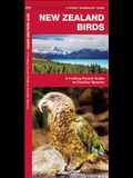 New Zealand Birds: A Folding Pocket Guide to Familiar Species