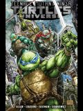 Teenage Mutant Ninja Turtles Universe, Volume 1: The War to Come