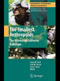 The Smallest Anthropoids: The Marmoset/Callimico Radiation