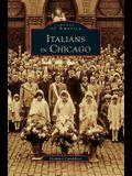 Italians in Chicago