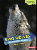 Gray Wolves: Howling Pack Mammals