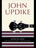 Licks of Love: Short Stories and a Sequel, Rabbit Remembered