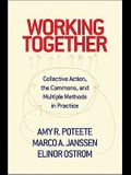 Working Together: Collective Action, the Commons, and Multiple Methods in Praccollective Action, the Commons, and Multiple Methods in Pr