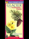 Glacier National Park Flowers & Trees