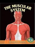 The Muscular System (Early Bird Body Systems)