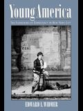 Young America: The Flowering of Democracy in New York City