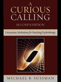 A Curious Calling: Unconscious Motivations for Practicing Psychotherapy, Second Edition