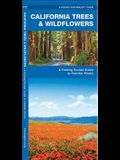 California Trees & Wildflowers: A Folding Pocket Guide to Familiar Plants