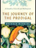 The Journey of the Prodigal: A Parable of Sin and Redemption