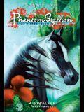 Mistwaker (Phantom Stallion: Wild Horse Island, No. 7)