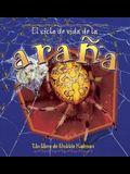 El Ciclo de Vida de la Arana = The Life Cycle of a Spider