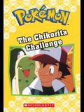 The Chikorita Challenge (Pokémon Classic Chapter Book #11), 21