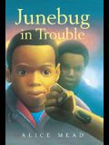 Junebug in Trouble