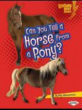 Can You Tell a Horse from a Pony?