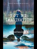 Not My Imagination: What's the meaning of it all?