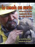 La Camada Con Suerte: Cachorros de Lobo Rescatados de Un Incendio Forestal (Lucky Litter, The: Wolf Pups Rescued from Wildfire)