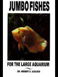 Jumbo Fishes Large Aquarium