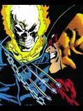 Marvel Comics Presents: Wolverine, Vol. 4 (v. 4)