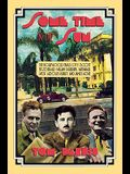 Some Time in the Sun: The Hollywood Years of F. Scott Fitzgerald, William Faulkner, Nathanael West, Aldous Huxley & J Agee