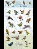 Sticker Play Scene: Garden Birds
