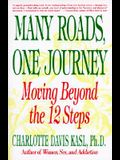Many Roads One Journey: Moving Beyond the Twelve Steps