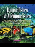 Damselfishes & Anemonefishes: The Complete Illustrated Guide to Their Identification, Behaviors, and Captive Care