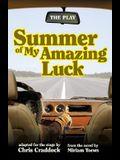 Summer of My Amazing Luck