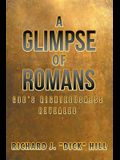 A Glimpse of Romans: God's Righteousness Revealed