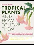 Tropical Plants and How to Love Them: Building a Relationship with Heat-Loving Plants When You Don't Live in the Tropics - Angel's Trumpets - Lemongra