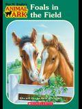 Animal Ark #24: Foals in the Fields