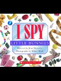 I Spy Little Bunnies: A Book of Picture Riddles [With Foil]