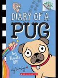 Pug Blasts Off: Branches Book (Diary of a Pug #1), 1