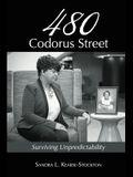 480 Codorus Street