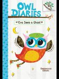Eva Sees a Ghost: A Branches Book (Owl Diaries #2) (Library Edition), 2