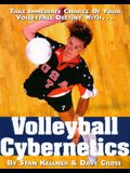 Volleyball Cybernetics