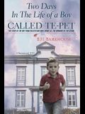 Two days in the life of a boy called Te-pet: The story of the boy from Chezzetcook who broke all the windows of the school
